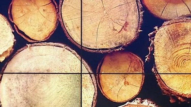 Commerce : dans les filières bois et textile, la production française profite aux pays étrangers (France 3)