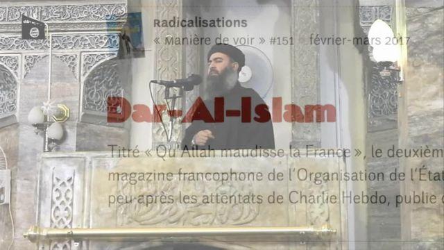 VRAI OU FAKE. Terrorisme : comment une théorie du complot a construit le djihadisme