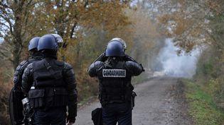 Des gendarmes tentent d'empêcher des zadistes d'occuper les lieux à Notre-Dame-des-Landes (Loire-Atlantique), le 8 février 2013. (ALAIN LE BOT / AFP)