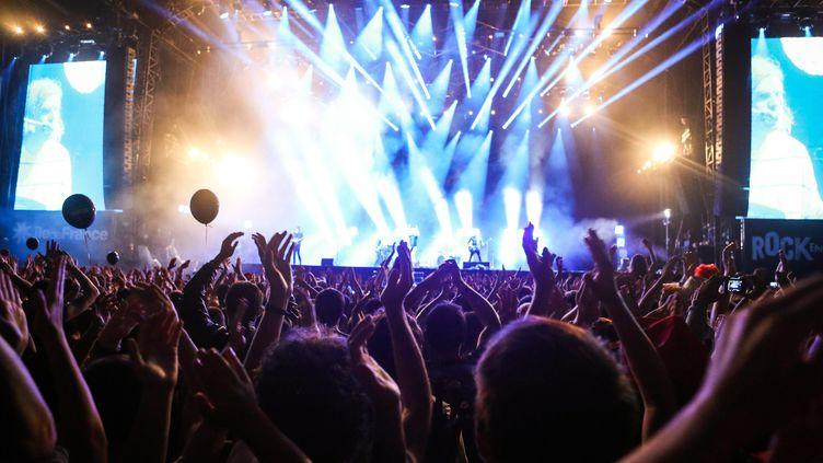 Le concert de Franz Ferdinand lors du festival Rock en Seine, le 25 juillet 2017. (MAXPPP)