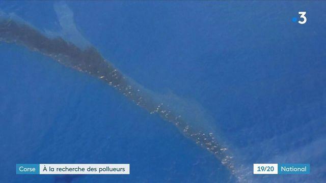 Corse : les autorités s'activent pour protéger l'île des nappes d'hydrocarbures