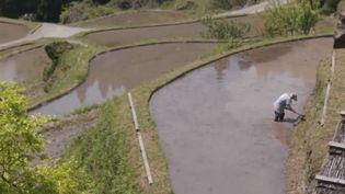 L'objectif du village de Kamikatsu est de produire zéro déchet. (Capture d'écran France 3)