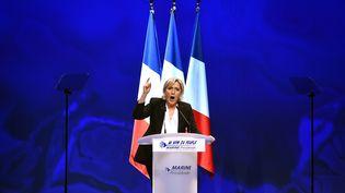 Marine Le Pen en meeting, le 26 février 2017. (JEAN-FRANCOIS MONIER / AFP)