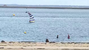 Vacances de la Toussaint : de nombreux Français sur le chemin des vacances. (FRANCE 3)