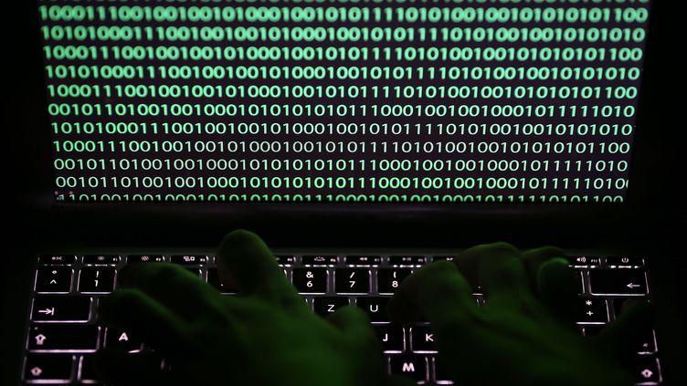 Sécurité et cyber risque sur Internet. (Photo d'illustration) (OLIVER BERG / DPA / AFP)