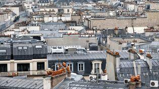 Panomara des toits de Paris, photographiés le 18 février 2016. (MAXPPP)