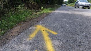 La flèche jaune indiquant la sortie de route de la fourgonnette à Rohan, où un accident a fait quatre morts, tous mineurs, dans la nuit du samedi 1er au dimanche 2 août. (FRED TANNEAU / AFP)