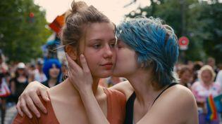 """Le film """"La Vie d'Adèle"""" d'Abdellatif Kechiche a reçu la palme d'or à Cannes en 2013. (KOBAL / AFP)"""