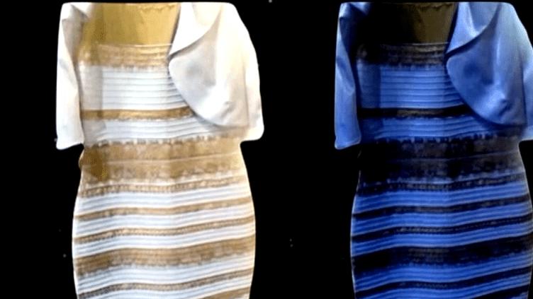 Créée par une styliste britannique, la petite robe a déchaîné les passions !  (France 2 Culturebox)