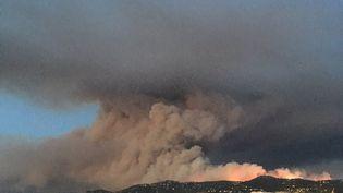 Le Cap Bénat ravagé par les flammes, le 26 juillet 2017, près de Bormes-les-Mimosas (Var). (MAXENCE PETITJEAN / RADIO FRANCE)