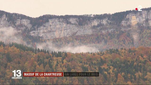 Isère : la bois du massif de la Chartreuse a obtenu son AOC