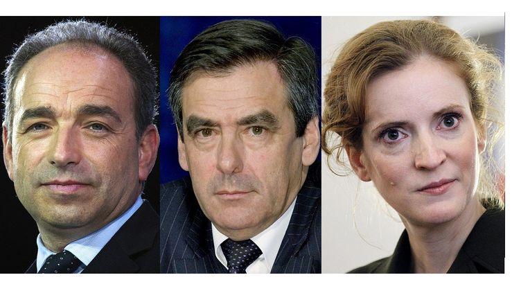 Jean-François Copé, François Fillon et Nathalie Kosciusko-Morizet, entre autres, se disputent la présidence de l'UMP. (LIONEL BONAVENTURE / AFP)