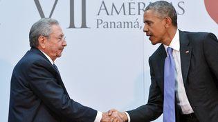 Le président de Cuba, Raul Castro, et son homologue américain, Barack Obama, le 11 avril 2015 à Panama City (Panama). (MANDEL NGAN / AFP)