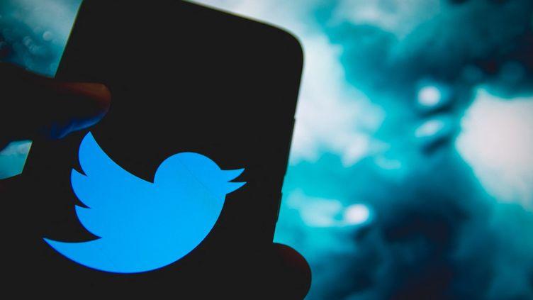 Twitter permet désormais à ses utilisateurs anglophones de verser un pourboire aux comptes qu'ils apprécient, annonce un communiqué de l'entreprise californienne, le 6 mai 2021. (NIKOLAS KOKOVLIS / NURPHOTO / AFP)