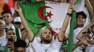 Un supporter algérien brandit son drapeau le 1er juillet au Caire (JAVIER SORIANO / AFP)