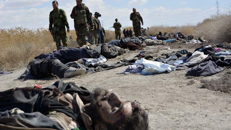 Des soldats syriens passant entre des cadavres de rebelles tués lors d'un bombardement dans la Ghouta otriantale, près de Damas (Syrie), le 26 février 2014. (HASSAN YUSSEF / AFP)