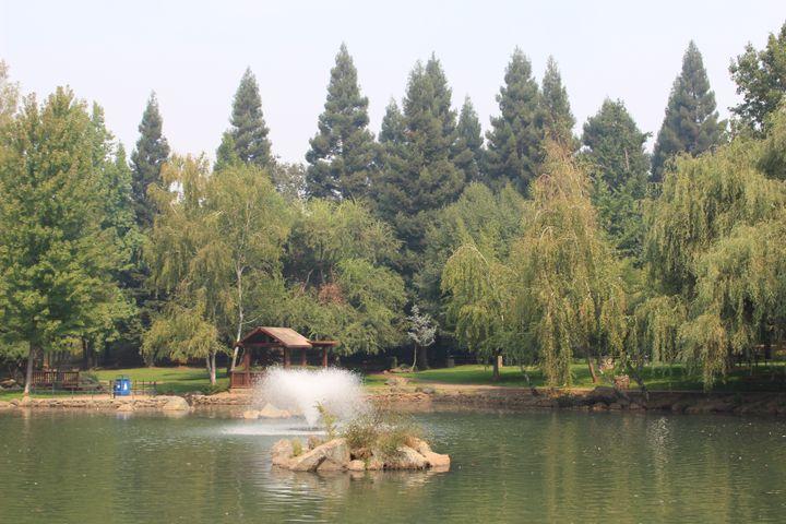 Un parc de Paradise (Californie), épargné par l'incendie, le 21 septembre 2020. (ROBIN PRUDENT / FRANCEINFO)