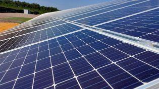 Des panneaux solaires installés par la société allemande MontanSolar sur un ancien site minier de Diesen (Moselle), le 13 juin 2021. (THOMAS LAVAUD / RADIO FRANCE)