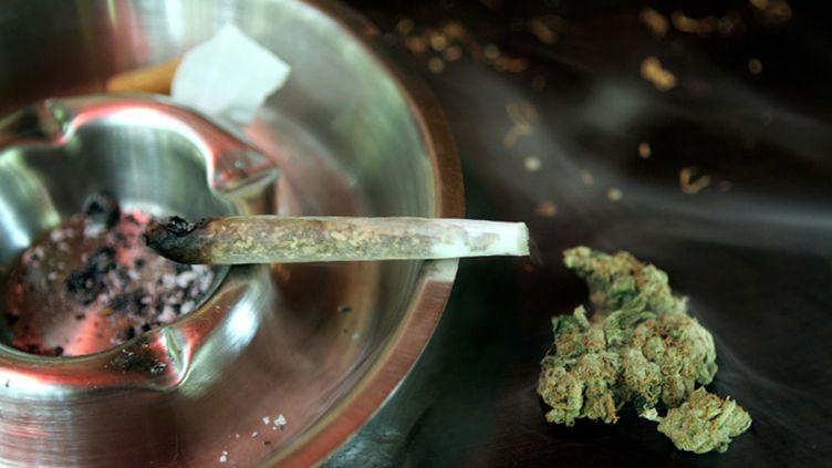 (En 2009, la skunk dominait le marché des drogues illicites au Royaume-Uni © Reuters)