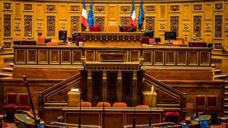 L'hémicycle du Sénat au Palais du Luxembourg à Paris. (JEAN-FRANCOIS FERNANDEZ / RADIOFRANCE)