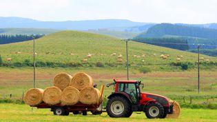 Les agriculteurs sont les actifs qui déclarent la plus longue durée de travail hebdomadaire, selon une étude de l'Insee publiée le 22 novembre 2016. (PAULO AMORIM / MOMENT RF / GETTY IMAGES)