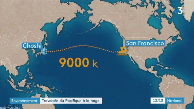 Environnement : l'incroyable traversée du Pacifique à la nage de Benoît Lecomte