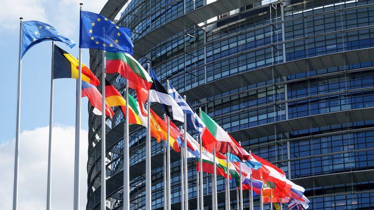 Les élections européennes auront lieu le26 mai 2019. (DANIEL KALKER / DPA)