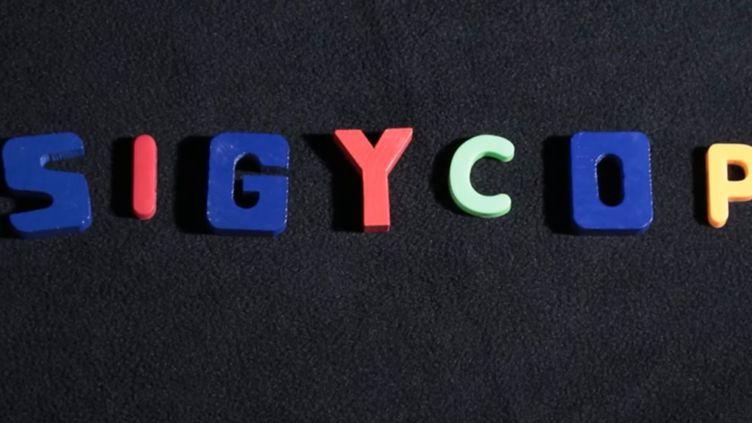 SIGYCOP est le profil médical qui permet d'évaluer l'aptitude à servir dans la police, l'armée ou les pompiers. (France 3)