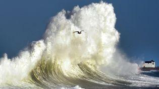 Un peu plus loin, les vagues gigantesques prennent une couleur or lorsqu'elles sont éclairées par le soleil. (FRED TANNEAU / AFP)