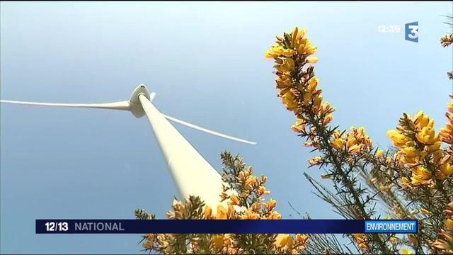 Énergie éolienne : un secteur d'avenir