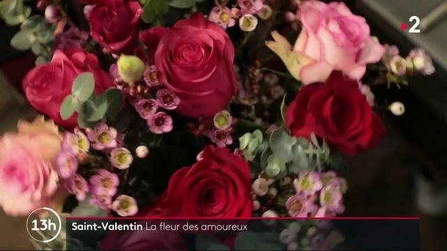 Saint-Valentin : la rose, fleur star dans le cœur des amoureux