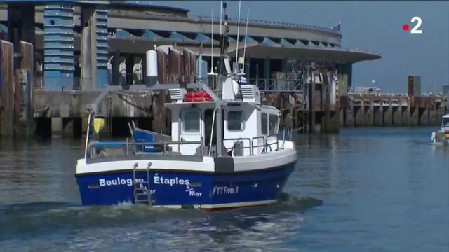 Brexit : les pêcheurs du Nord interdits de pêche dans les eaux britanniques