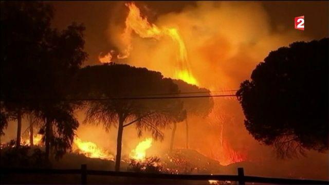 Incendie en Espagne : évacuations massives pour fuir les flammes