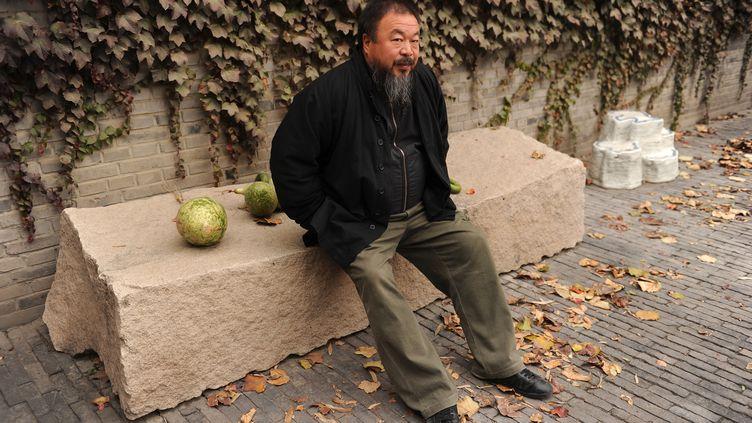 L'artiste dissident chinois Ai Weiwei dans le jardin de sa maison à Pékin le 7 novembre 2010. (PETER PARKS/AFP)