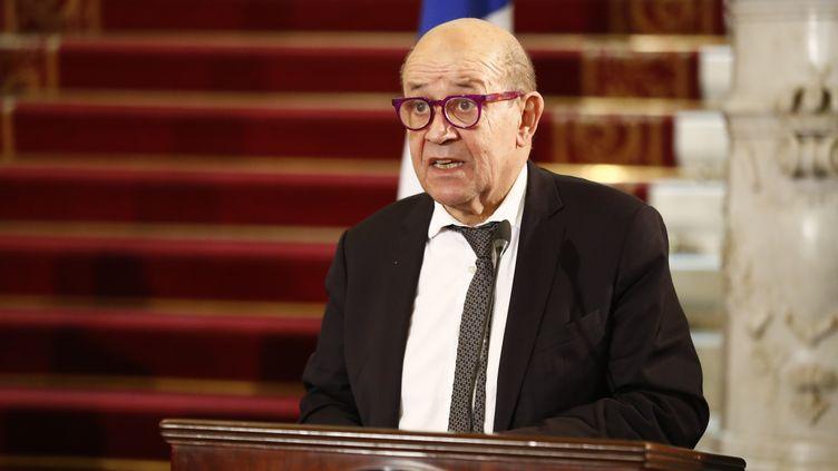 Le ministre des Affaires étrangères, Jean-Yves Le Drian, lors d'une conférence de presse au Caire (Egypte), le 11 janvier 2021. (KHALED DESOUKI / AFP)