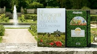 Deux livres pour découvrir autrement l'histoire, la richesse et les beautés du Potager du Roi à Versailles.  (France 3 Culturebox)