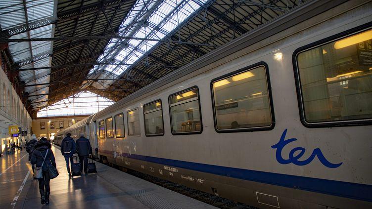 Un TER engare de Marseille-Saint-Charles, le 14 janvier 2019. (SPEICH FREDERIC / MAXPPP)