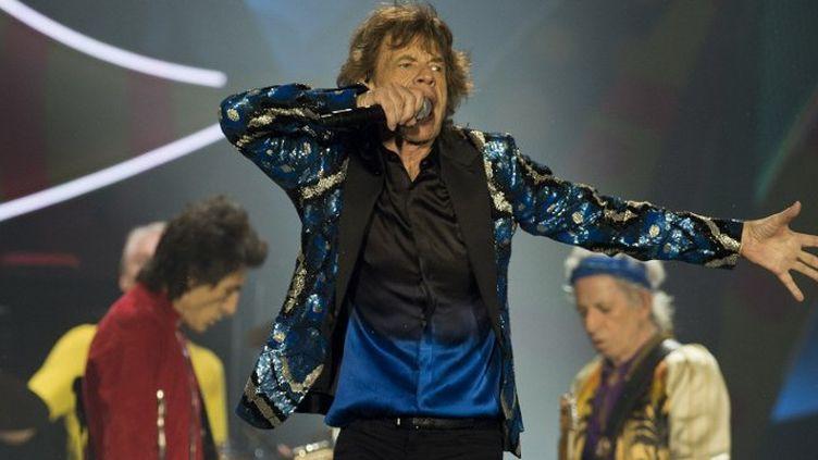 Les Stones en concert au Brésil  (NELSON ALMEIDA / AFP)