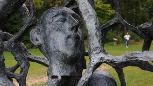 """La sculpture de Haïm Kern en hommage aux soldats tombés au Chemin des Dames baptisée """"Ils n'ont pas choisi leur sépulture"""".  (Rollinger Ana / AFP)"""