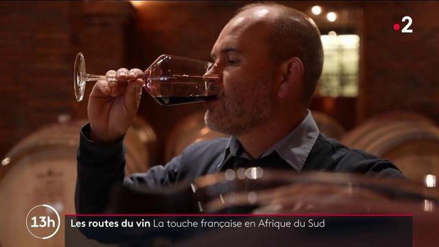 Routes du vin : en Afrique du Sud, des vignobles aux noms français, héritage de la colonisation