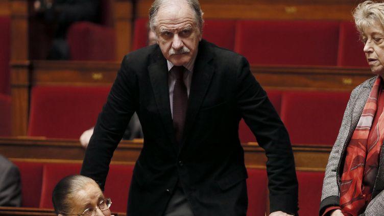 Le député écologiste Noël Mamère à l'Assemblée nationale, le 17 décembre 2014. (PATRICK KOVARIK / AFP)