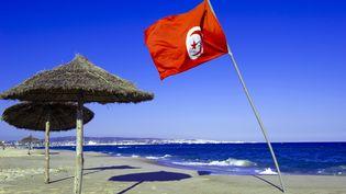 Drapeau tunisien sur une plage d'Hammamet. (NORBERT SCANELLA / ONLY WORLD / AFP)