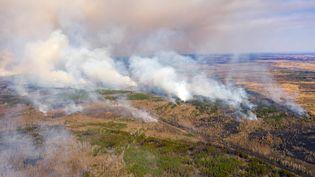 Des feux de forêt dans la zone d'exclusion de Tchernobyl (Ukraine), le 12 avril 2020. (VOLODYMYR SHUVAYEV / AFP)