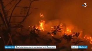 La forêt amazonienne en feu au Brésil (France 3)
