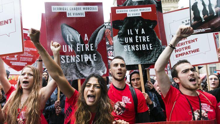La huitième édition de la marche pour la fermeture des abattoirs organisée par l'association L214, le 8 juin 2019 à Paris. (VINCENT ISORE / MAXPPP)