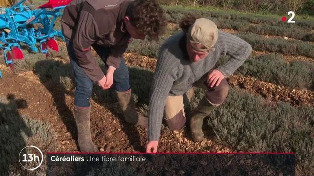 Charente-Maritime : agriculteurs céréaliers, une affaire de famille