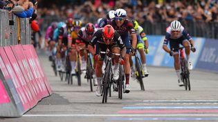 Caleb Ewan vainqueur au sprint lors de la septième étape du Tour d'Italie le 14 mai 2021. (DARIO BELINGHERI / AFP)