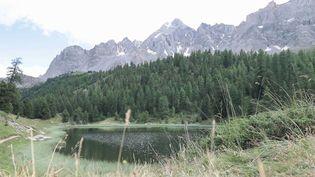 Hautes-Alpes : le parc naturel régional du Queyras attire de plus en plus de visiteurs (France 3)