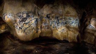 À l'intérieur de la réplique de la grotte de Chauvet (mars 2015)  (Bony / Sipa)