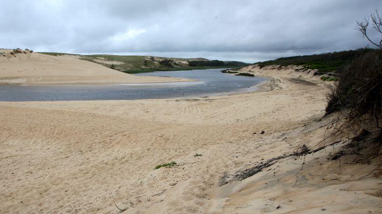 La réserve naturelle du courant d'Huchet (Landes). (MAXPPP)